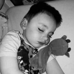 Dixon, der sover dejligt med Rasleko